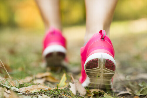 Caminhada Contemplativa: já ouviu falar?